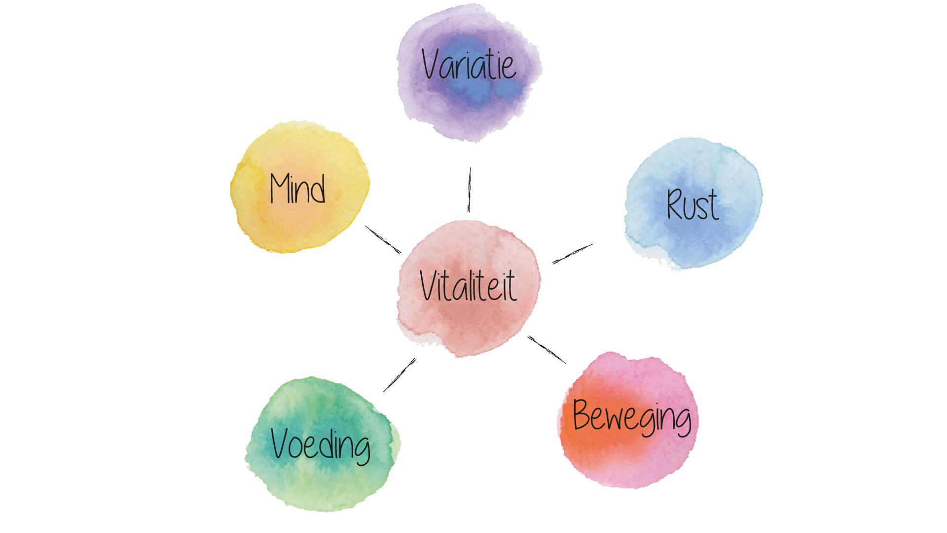 vitaliteit cirkel